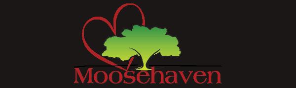 Moosehaven Halloween 2020 Home   Moosehaven